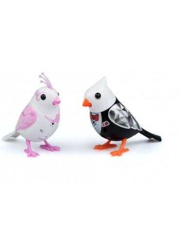 Digibirds Para młoda Dumel