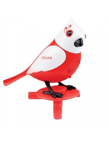 Digibirds 3 seria Polek Dumel