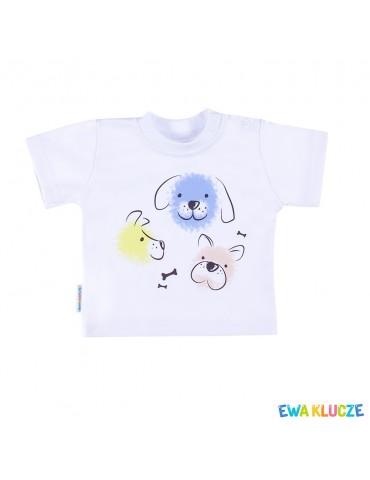 Bluzka bawełniana krótki rękaw niebiesko-biała LOVELY 68-86 Ewa Klucze